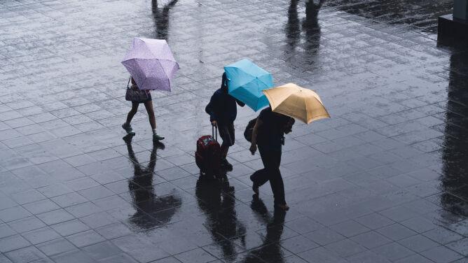 Pogoda na dziś: opady deszczu z porywistym wiatrem. Do 12 stopni