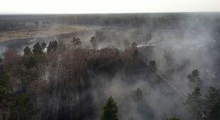Zagrożenie pożarami w wielu lasach jest duże