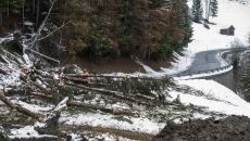 Lawiny błotne w Austrii (PAP/EPA/CHRISTIAN BRUNA)
