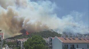 W Turcji płoną lasy